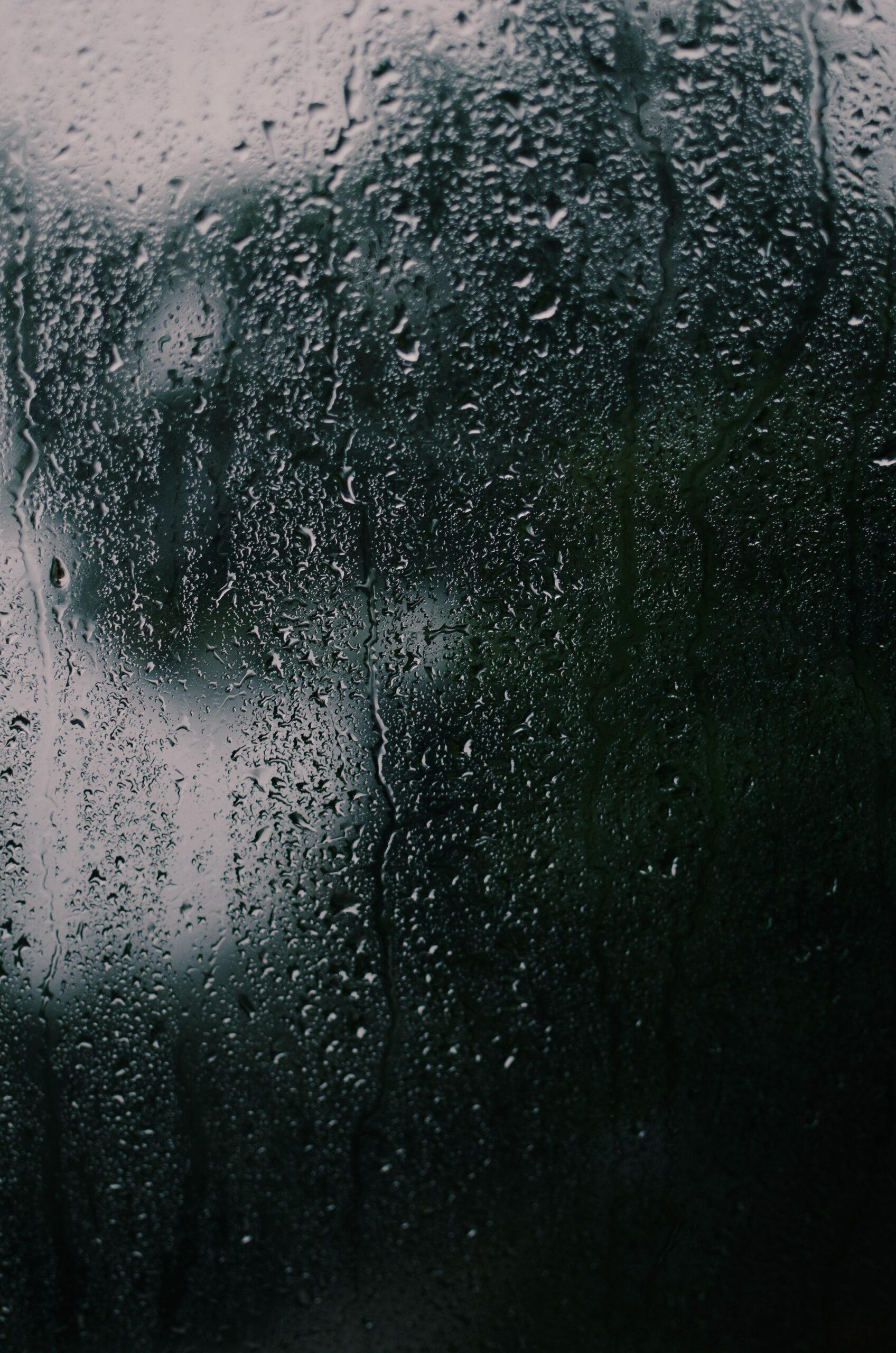 hard water on shower glass door